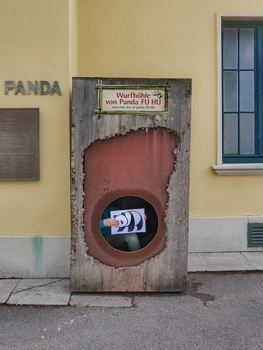 #goodpandacontest flickr panda in the Maternity Den of Panda Fu Hu at the Zoo Tiergarten Schönbrunn Lotti und der flickr Panda in der Wurfhöhle - für Flickr Good Panda Photo Contest