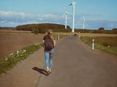 Auf der Straße | 4. September 2017 | Fehmarn - Schleswig-Holstein - Deutschland