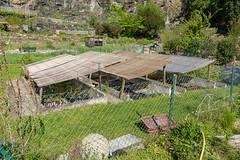 Carinthia Botanical Garden 4