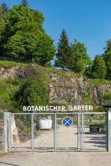 Carinthia Botanical Garden 1
