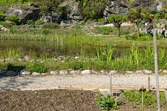 Carinthia Botanical Garden 3