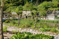 Carinthia Botanical Garden 2