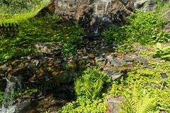 Carinthia Botanical Garden 20