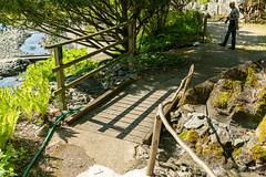 Carinthia Botanical Garden 22