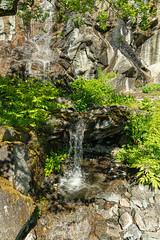 Carinthia Botanical Garden 21