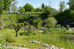Carinthia Botanical Garden 24