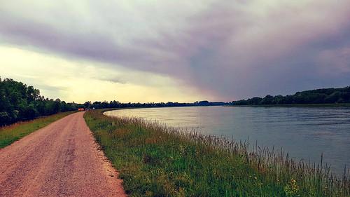 Rhein (begradigt), Rheindamm Fuss-/Rad-Weg Richtung Basel, Grenze zu Frankreich