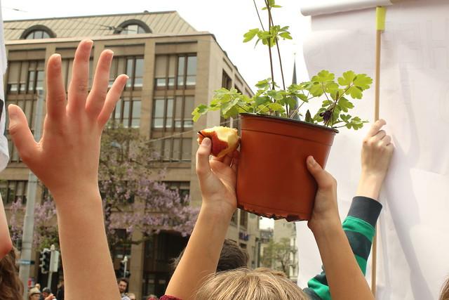 Klimastreik Garten