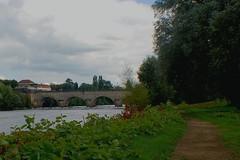 Bord de Loire digoin