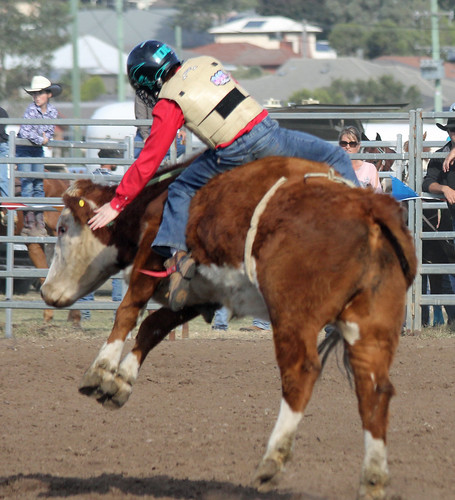 Under 11 Steer Riding