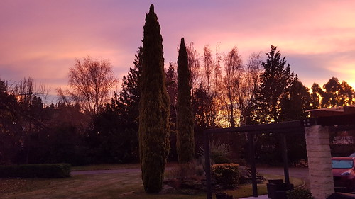 Saturday sunrise, Alexandra, Central Otago.