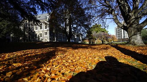 奧塔哥大學 University Otago