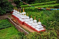 Farm and Stupas