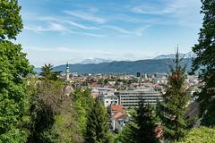Schweizerhaus 5