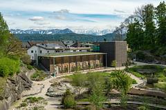 Carinthia Botanical Garden 30