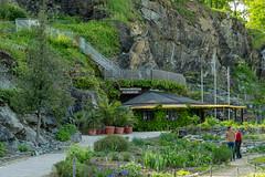 Carinthia Botanical Garden 29