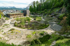 Carinthia Botanical Garden 31