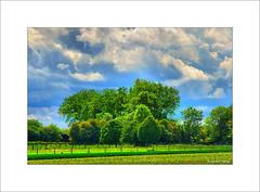 Sur les plateaux d'Artois... - Photo of Haute-Avesnes