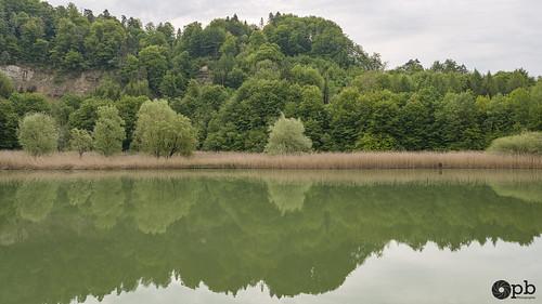 Réflexions au bord de l'eau