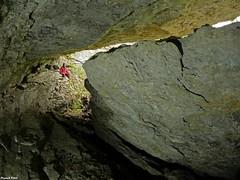 Abri sous bloc  (inedit)  Ladoye Sur Seille - Jura