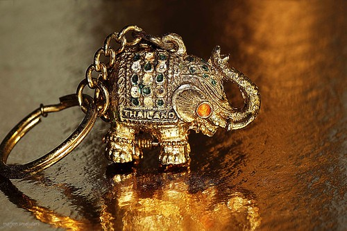 Superstition about the Elephant