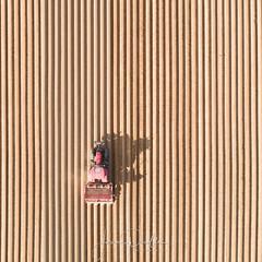 plantations de pommes de terre dans l'Arrageois - Photo of Haute-Avesnes
