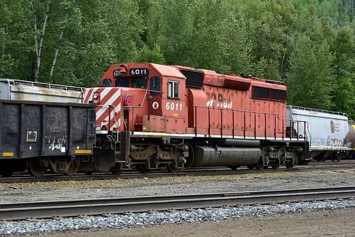 CP 6011