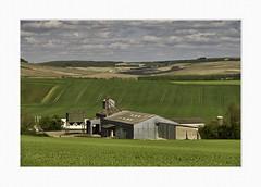 Chablis landscape - Photo of La Chapelle-Vaupelteigne