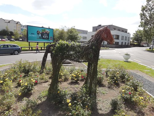 Horsing around at the roundabout Mhuinebeag Co. Carlow.