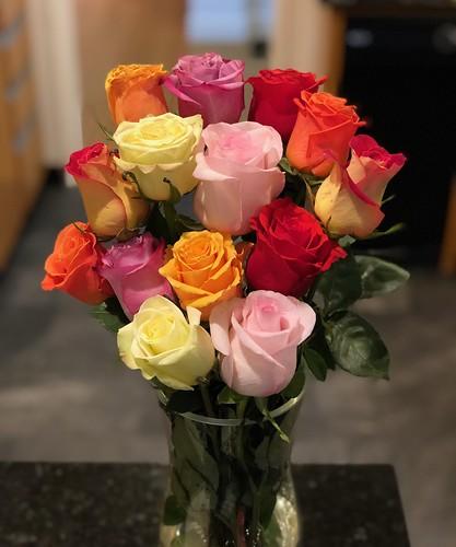 Multicolored Birthday Roses!