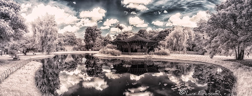 Infrared panoramic from botanic garden 680 nm