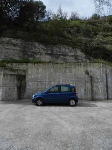 Parked Panda