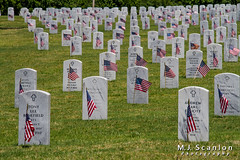 Memorial Day   West Tennessee Veterans Cemetery