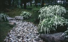 Каменная река / Rock river