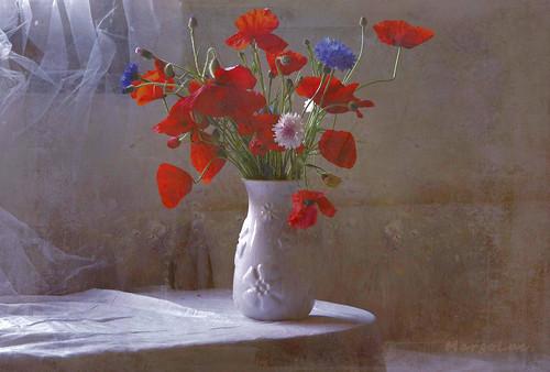 Wildflowers Spring Mood ...