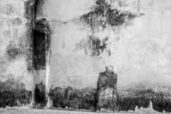 Abstraction/Série/Sauve - Photo of Saint-Jean-de-Crieulon