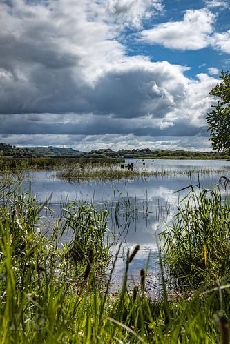 20190528-2019, Irland, The Lee Valley-001.jpg