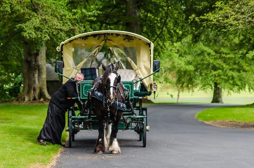 Adare - Horse Drawn Carriage