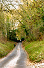 View of the path down from the Château Gaillard to Les Andelys, Normandy Region, France -42
