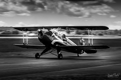 Le Bücker Bü-131 Jungmann de Gilles Tatry à #Airexpo 2019 - Photo of Muret
