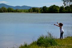 Grand projet : combler le lac !