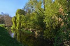 La Mossig - Photo of Furdenheim
