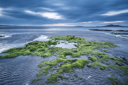Burrow Beach, Dublin