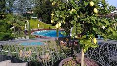 Hotel Simplon_182414