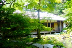 Renge-ji, Shoin (Drawing Room) -1 (June 2010)