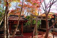Renge-ji, Precincts -1 (November 2015)