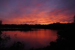 Tonight's sunset 😊