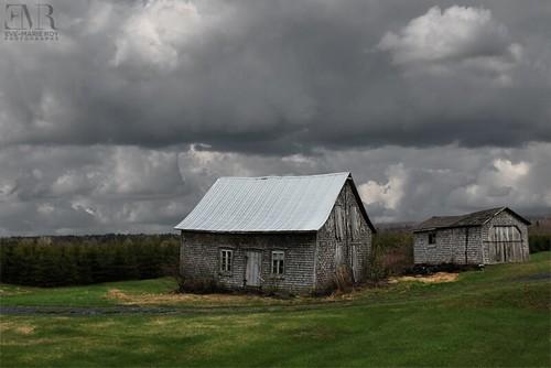 Maison abandonnée, L'accompagnée