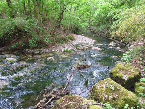 Les rivières sont des chemins qui marchent
