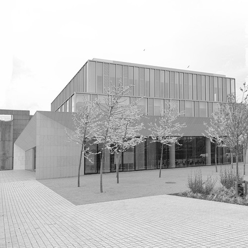 confucius institute UCD Belfield